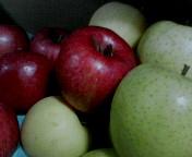りんごがいっぱぃ。