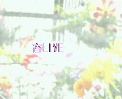春☆4月のライブ予定